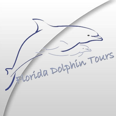Florida Dolphin Tours